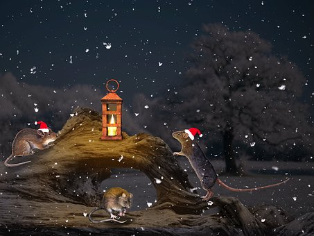 Christmas, Mouse, Sweet, Mice, Nicholas, Gifts, Rodent
