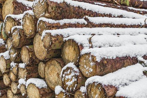 Wood, Wood Pile, Trees, Nature, Firewood, Holzstapel