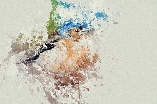 Birds, Watercolor, Colorful Birds
