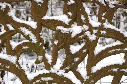 Winter, Snow, Wintry, Cold, Eiskristalle, White, Frozen