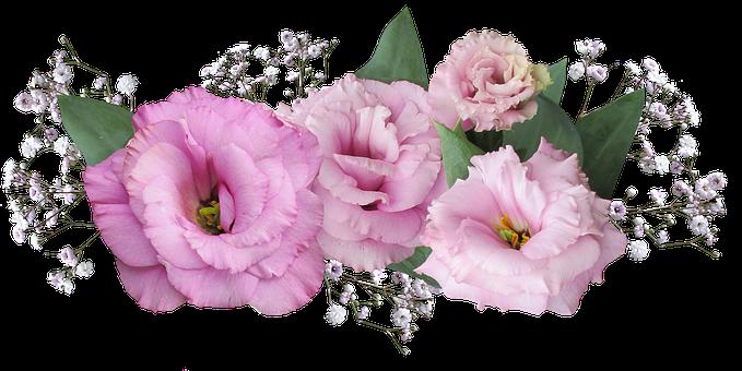 Flower, Arrangement, Pink Floral, Bunch