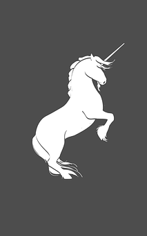 Unicorn, Silhouette, Rearing, Horse, Black And White