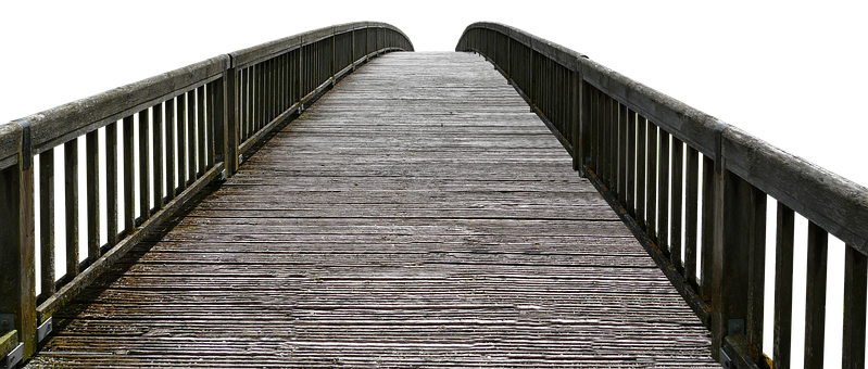 Wood, Boardwalk, Web, Wooden Bridge, Jetty, Bridge