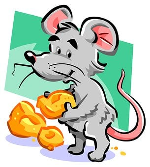 Mouse, Cheese, Tail, Rat, Mice, Hole, Rodent, Cute