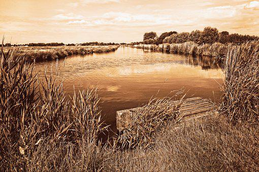 Waterway, Banks, Jetty, Rushes, Vegetation, Horizon