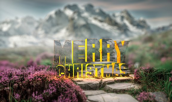 Nature, Outdoors, Landscape, Sky, Flower, Christmas