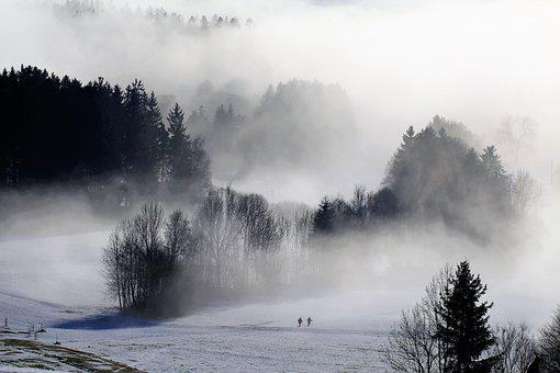 Fog, Nature, Winter, Hike, Wintry, Snow, Winter Cold