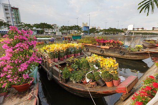 Flower, Market, Vietnam, The City, Each, Ho Chi Minh