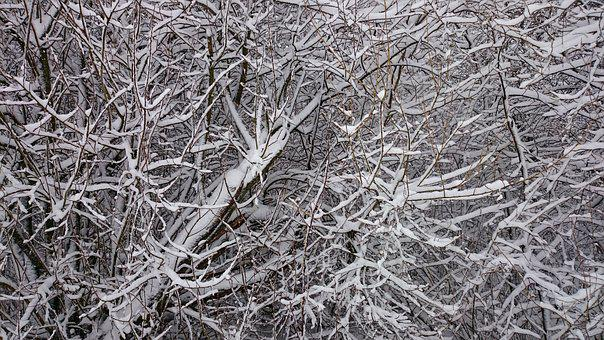 Nature, Frost, Texture, Abstract, Cold, The Background