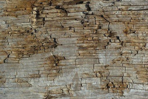 Wood-fibre Boards, Texture, Nature, Macro, Detail