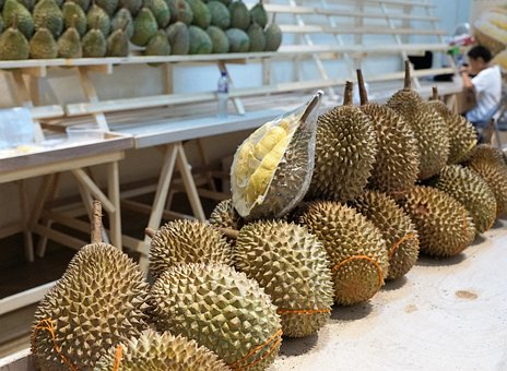 Fruit, Market, Food, Piercing, Tropical, Durian, Sale