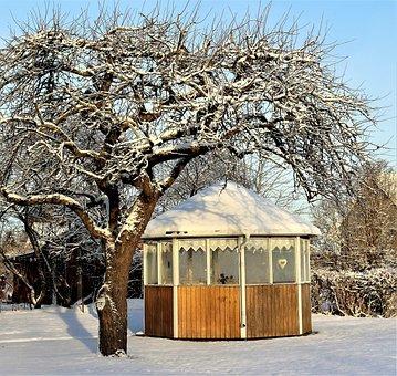 Tree, Winter, Gazebo, Nature, Snow, Pavilion, Garden