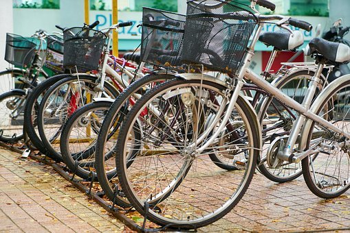 Bicycle, Park, Wheel, Sports, Healthy, Health, Move
