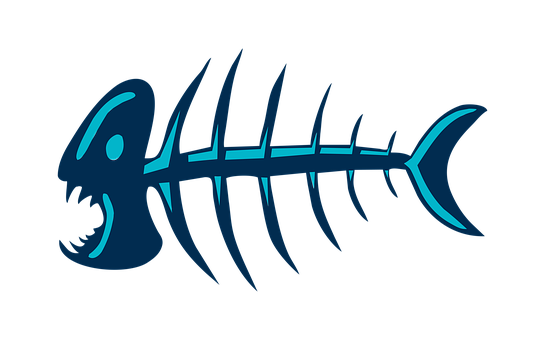 Fish, Fish Bones, Bones, Skeleton, Bone, Fishing