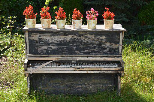 No One, Outdoors, Wood, Flower, Grass, Old Piano