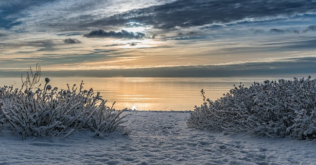 Water, Bay, Nature, Wild Rose Bushes, Sky, Clouds, Snow