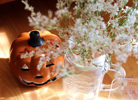 Autumn, Pumpkin, Flowers, Whites