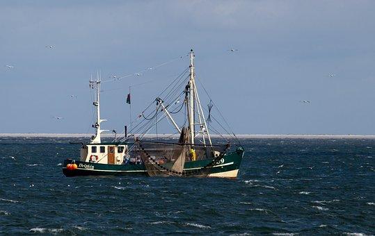 Sea, Waters, Ship, Boot, Coast, Port, Sky, Sail