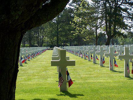 Cemetery, Grave, Tombstone, Tree, Remembrance, Cross