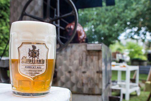 Beer, Svijany, Czech Beer, Grilling, Alcohol