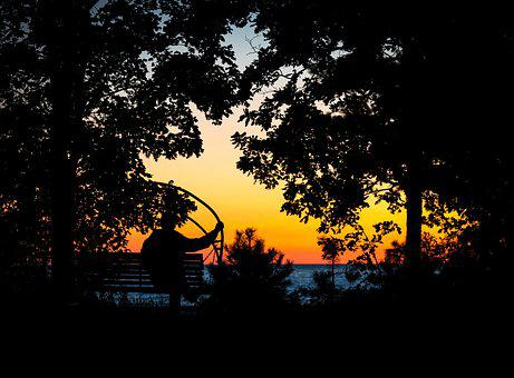 Trees, Sunset, Silhouette, Man, Bench, Swing