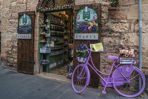 Road, Wheel, City, Tourism, Music, Herbs, Travel
