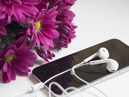Flower, Desktop, Technology, Desk, White, Office