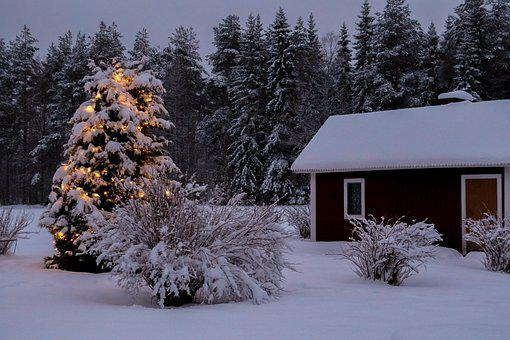 Snow, Winter, Christmas, Cottage, Blue For A While
