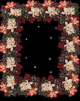 Frame, Border, Flowers, Berries