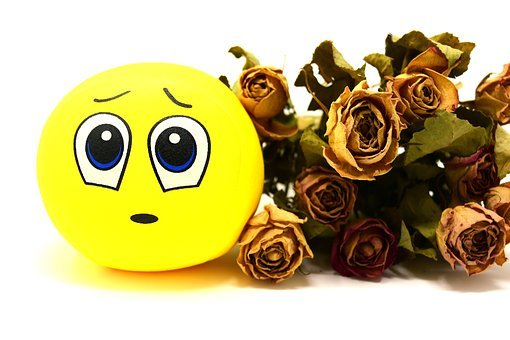 Smiley, Sad, Roses, Dried, Emoticon, Funny, Emotion