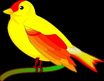Parrot, Bird, Exotic, Yellow, Canary Bird, Serin