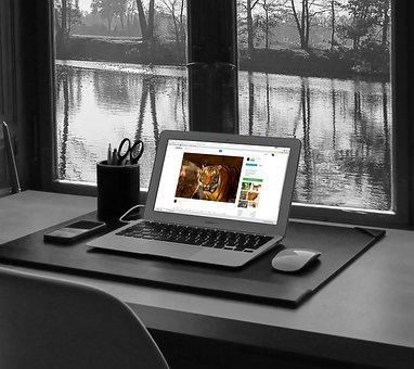 Laptop, Computer, Technology, Tablet, Tablet Computer