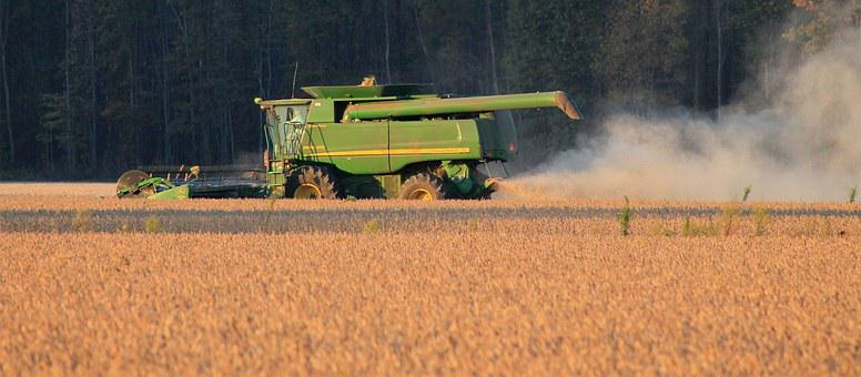 Harvest, Soybeans, Crop, Farming, Agriculture