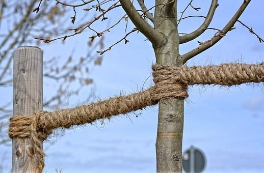 Fixing, Dew, Rope, Twisted Ropes, Strand, Knitting