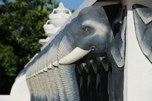 Animal, Elephant, Pagoda, Mahamevnawa, Mahaviharaya