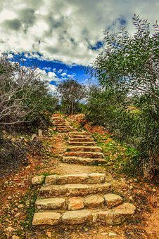Stairs, Path, Staircase, Stairway, Nature, Scenery