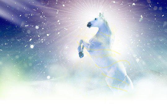 Winter, Christmas, Space, Snow, Nature, Horse