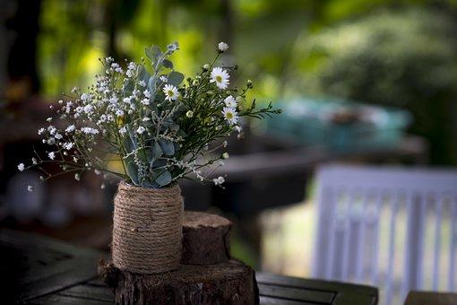 Natural, The Garden, Baby, Chrysanthemum, The Average
