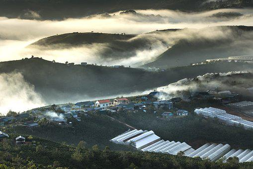Da Lat, Vietnam, Planting, Bright, The Hill, Theung