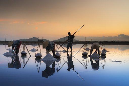 Salt, Hon Khoi, Vietnam, Field, Khanh Hoa, Province