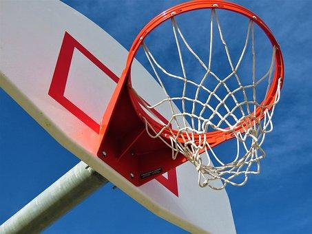 Basketball, Sport, Basket, Ball, Basketball Hoop