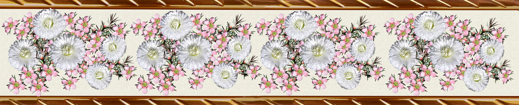 Border, Decorative Strip, Pattern, Daisies