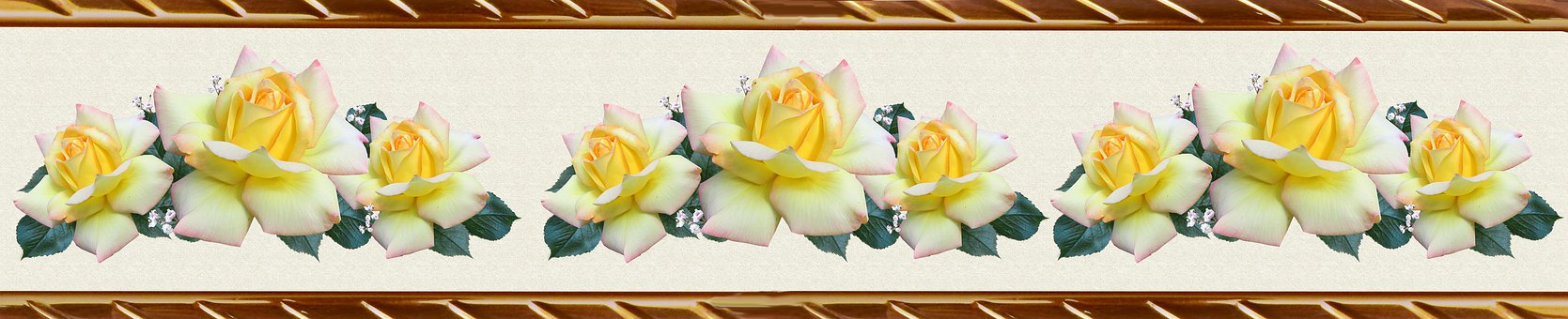 Border, Decorative Strip, Floral, Roses