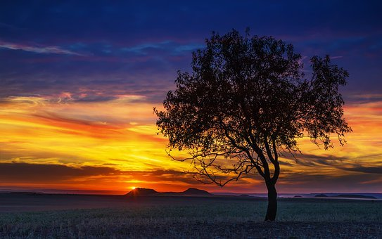 Sunset, Nature, The Dawn Family, The Sun, Landscape