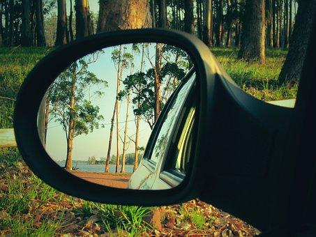 Tree, Nature, Wood, Lawn, Auto, Summer, Sky, Mirror