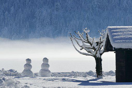 Winter, Snow, Cold, Ice, Frozen, Snowman, Frost