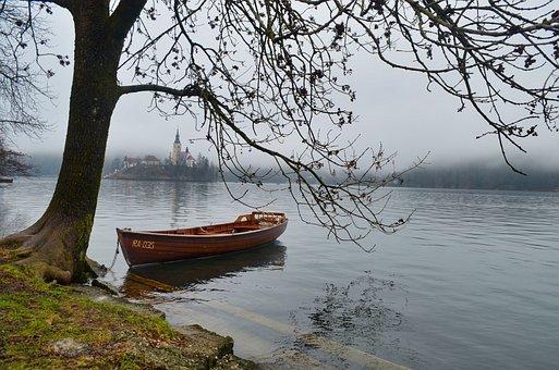 Bled, Slovenia, Tree, Water, Lake, Nature, Landscape