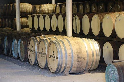 Winery, Wine, Basement, Holder, Winemaking