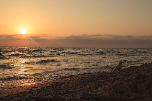 Sunset, Dawn, Water, Sun, Twilight, Beach, Evening, Sea