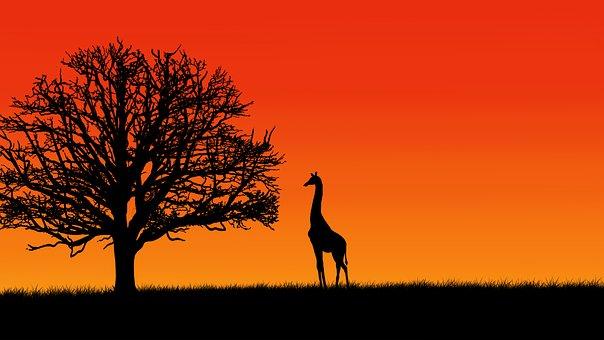 Tree, Giraffe, Digital Painting, View, Couple